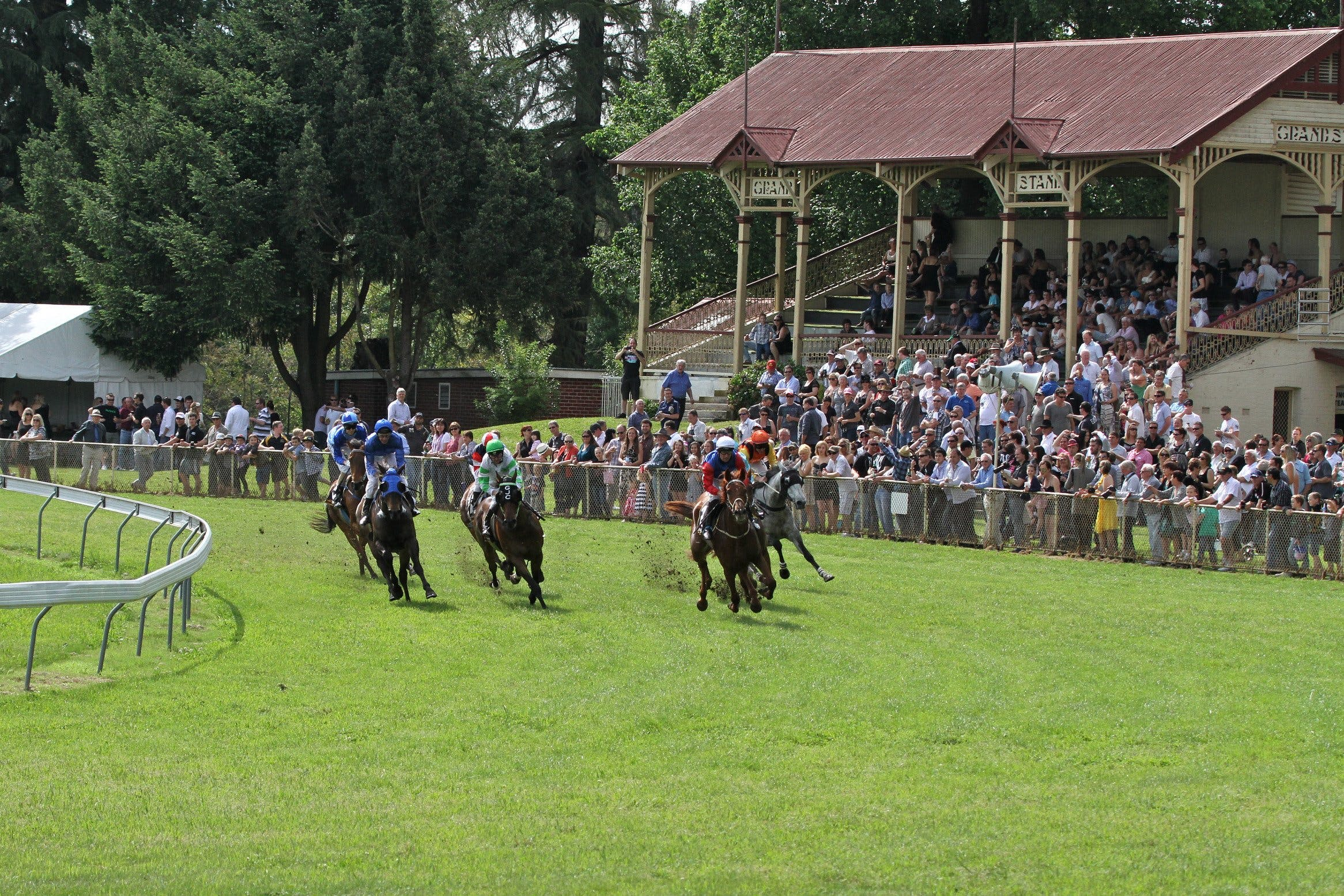 Tumut Derby Day - Palm Beach Accommodation