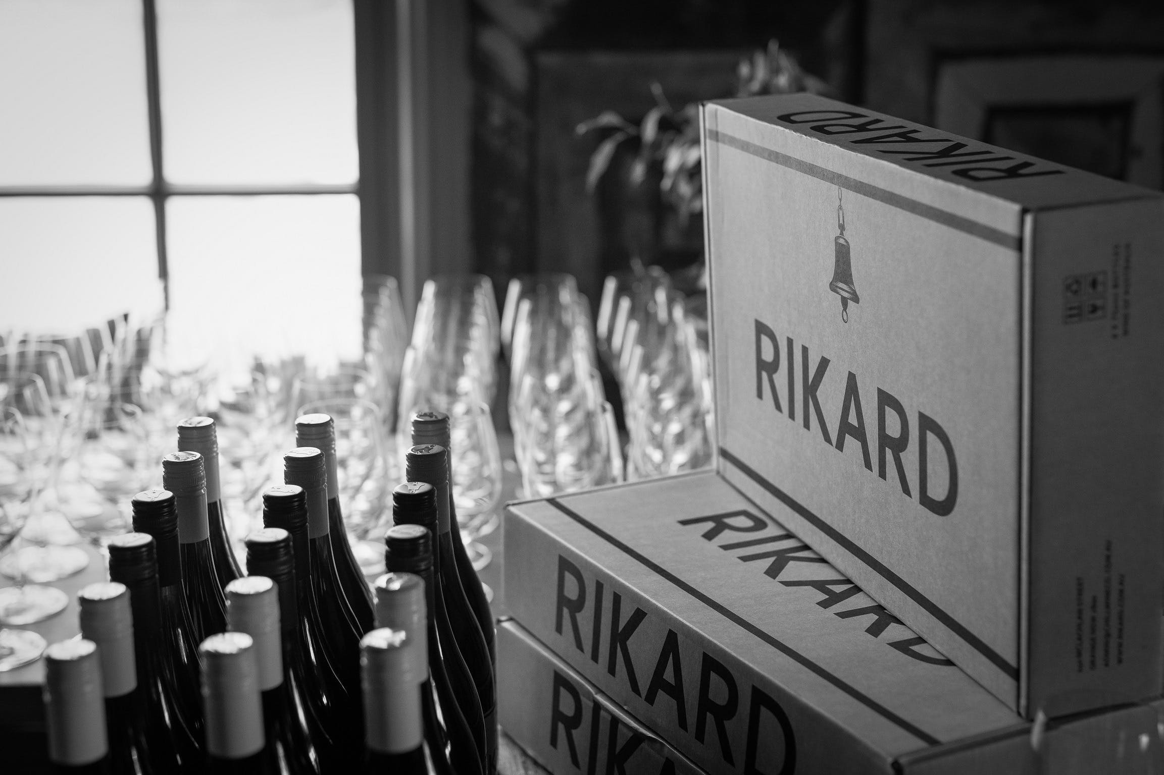Vin Vertical - Five Years of RIKARD Pinot Noir - Palm Beach Accommodation