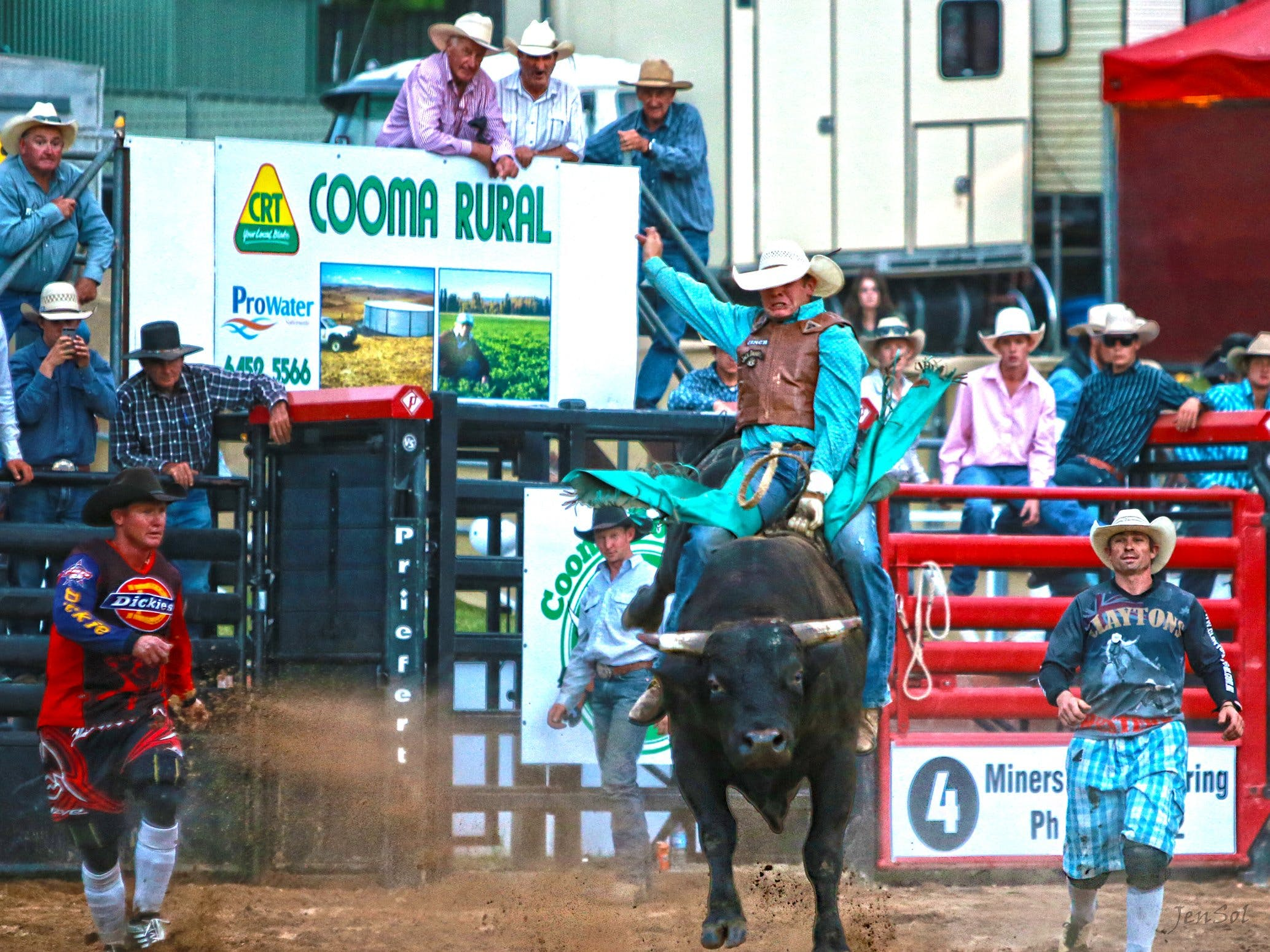 AgriWest Cooma Rodeo - Palm Beach Accommodation