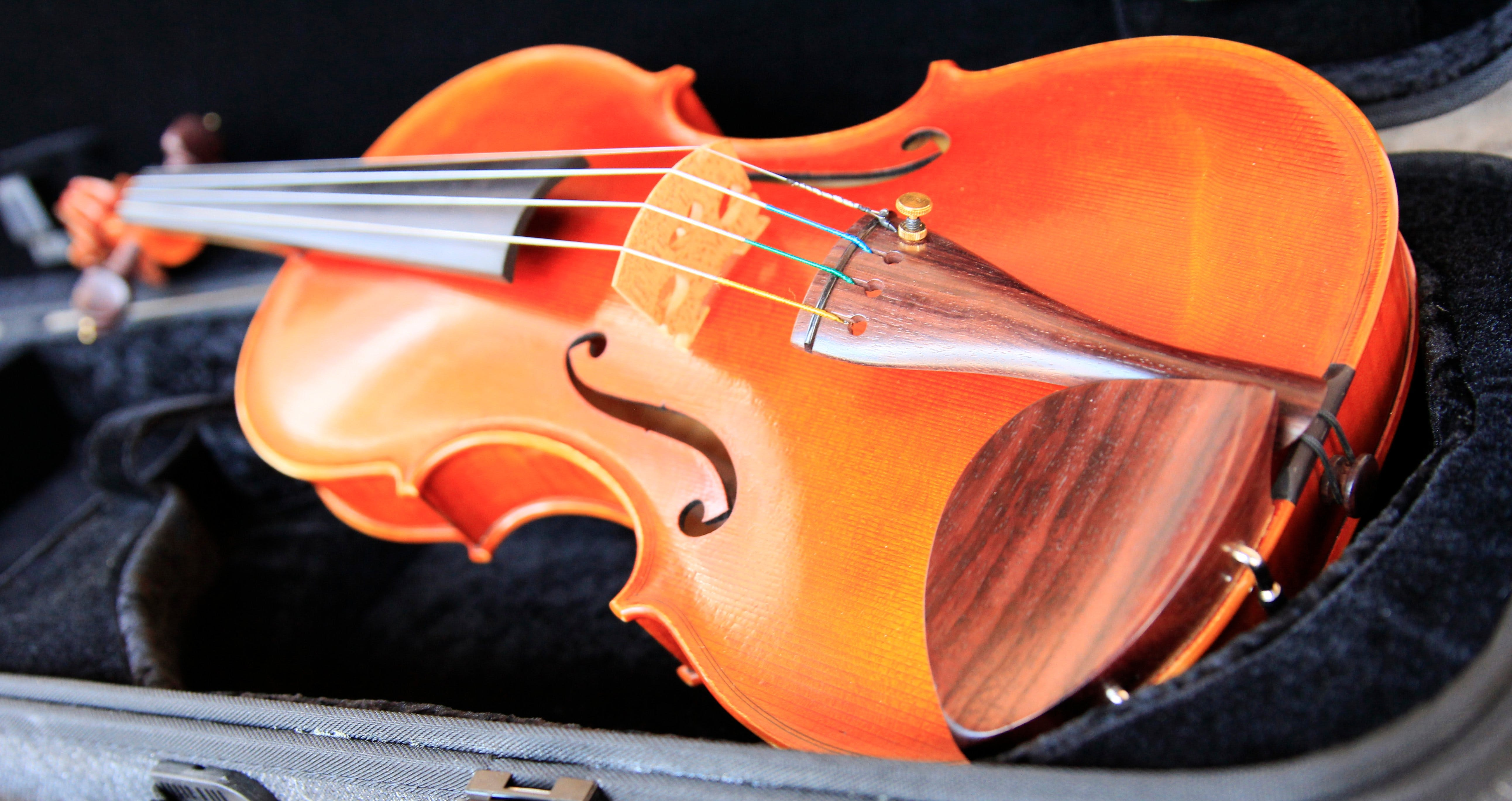 Kendall National Violin Competition Finals Weekend - Palm Beach Accommodation