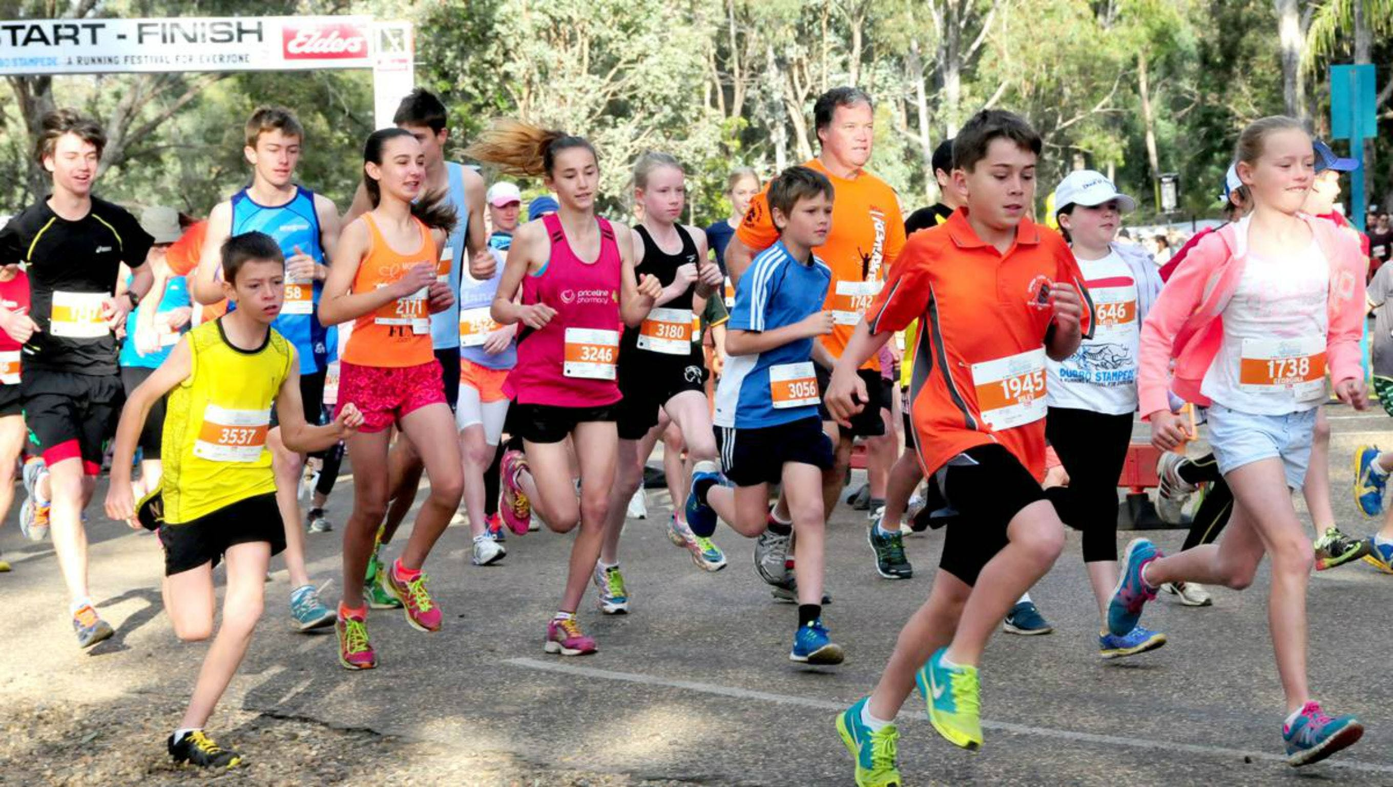 MAAS Group Dubbo Stampede Running Festival - Palm Beach Accommodation