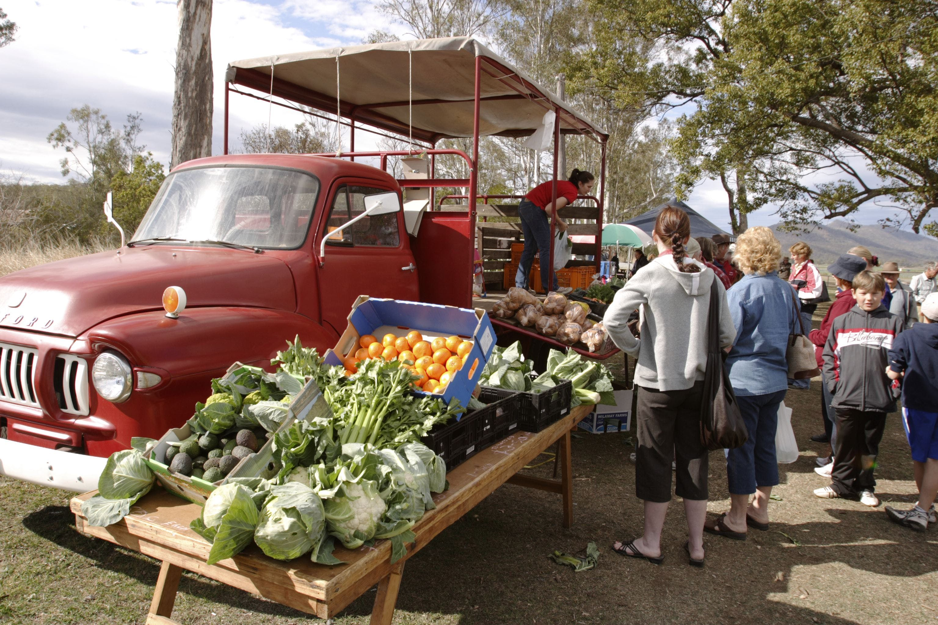 Murphys Creek Markets - Palm Beach Accommodation