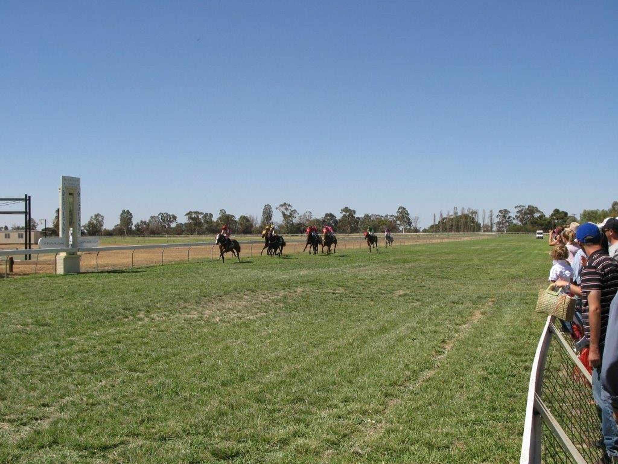 Balranald Races -Derby Day - Palm Beach Accommodation
