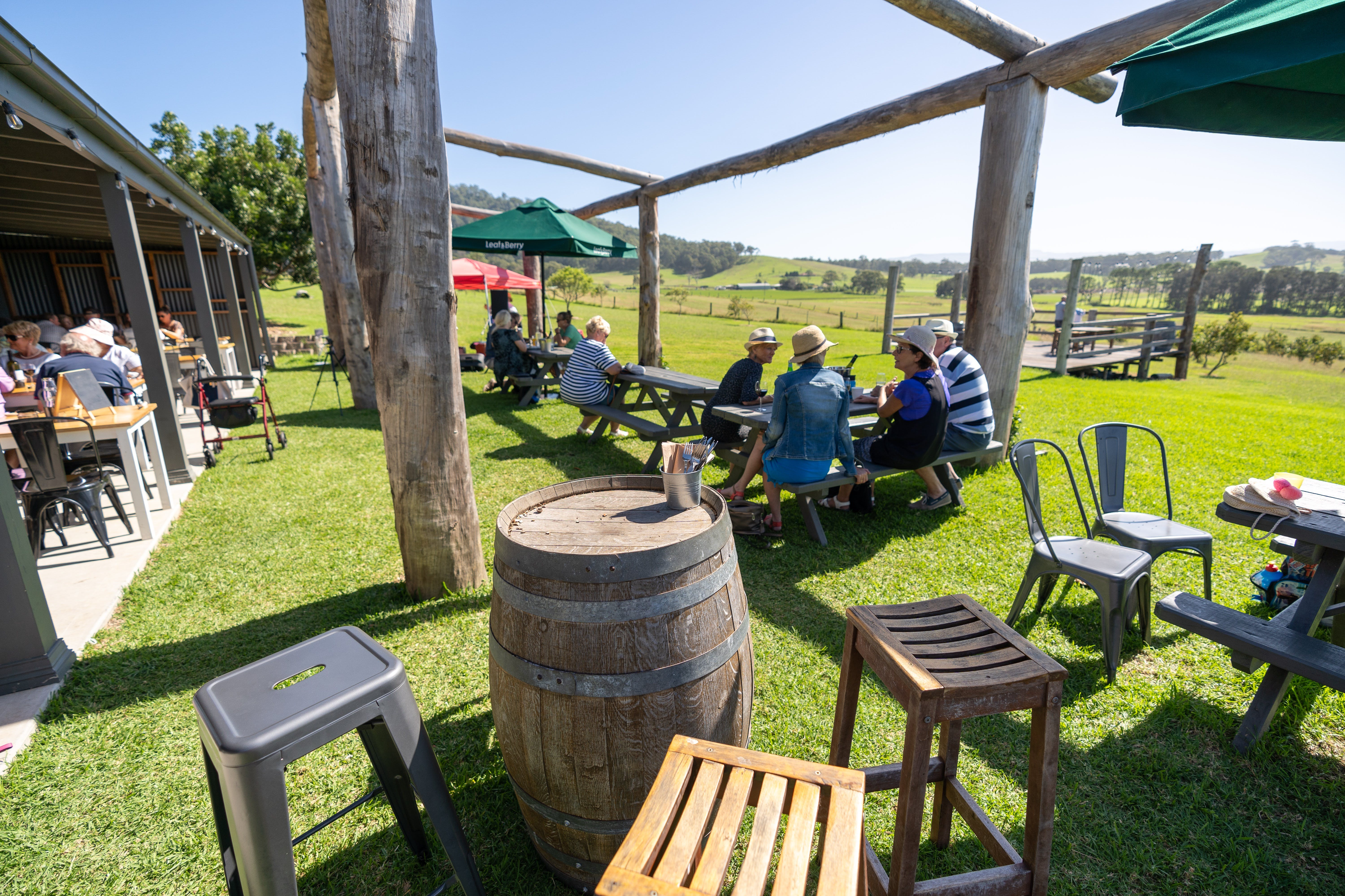 Live Music Sundays at Mountain Ridge Wines - Palm Beach Accommodation