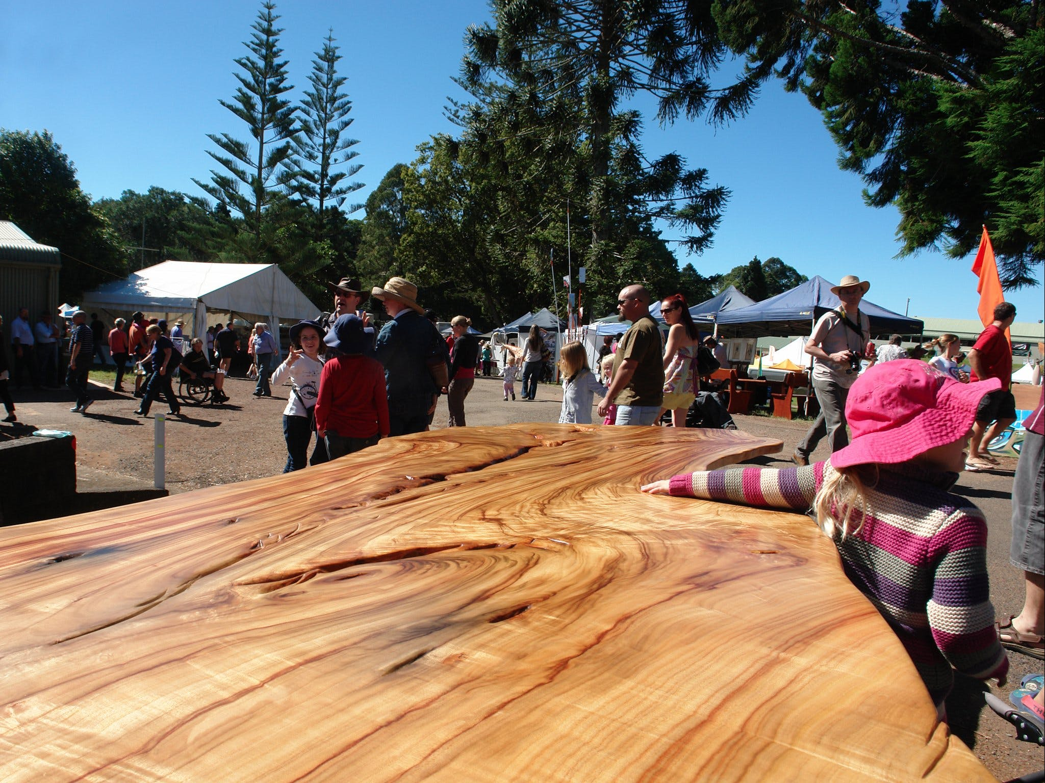 Maleny Wood Expo From Seed to Fine Furniture - Palm Beach Accommodation