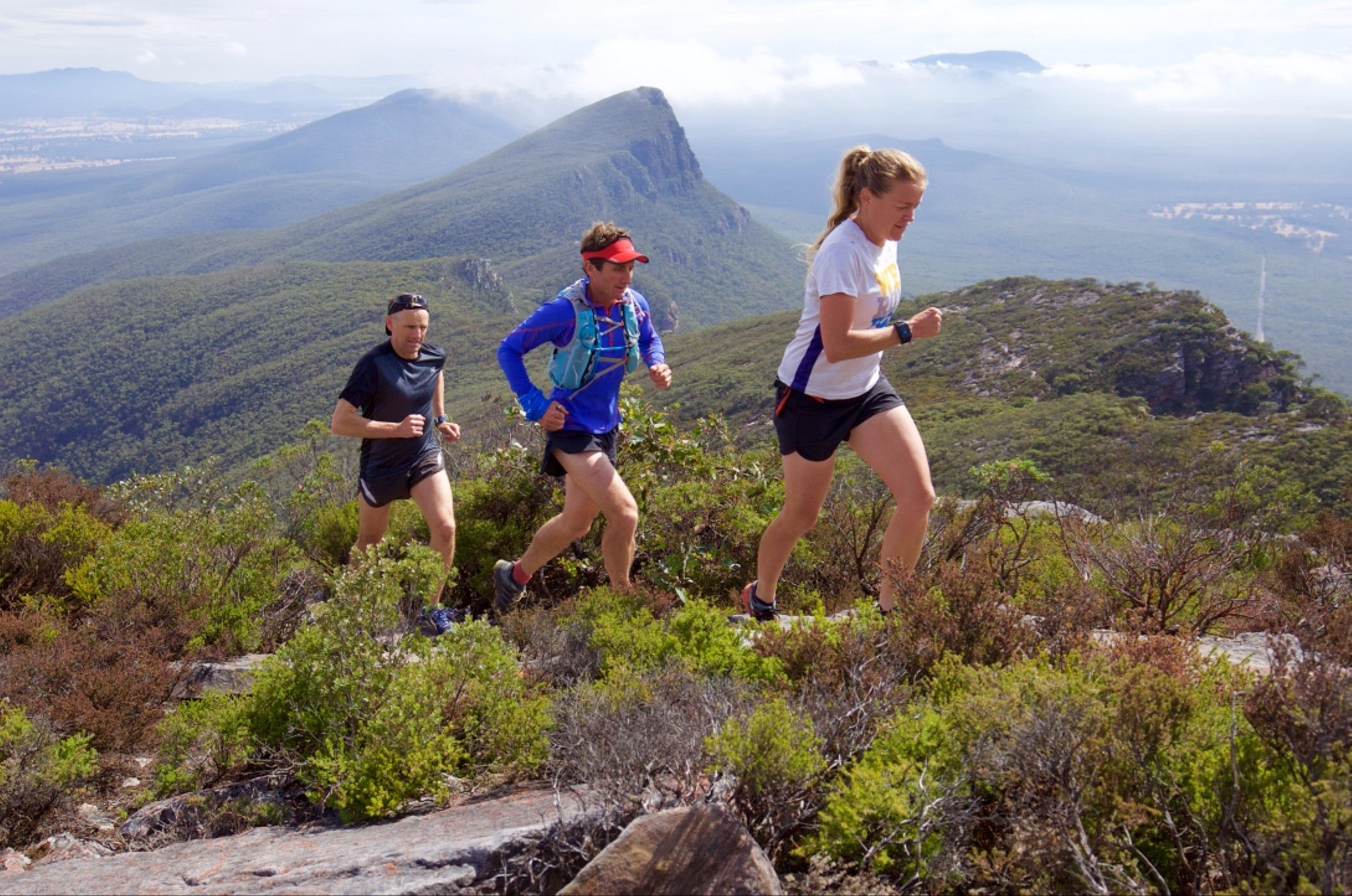 Peaks and Trails Run - Palm Beach Accommodation