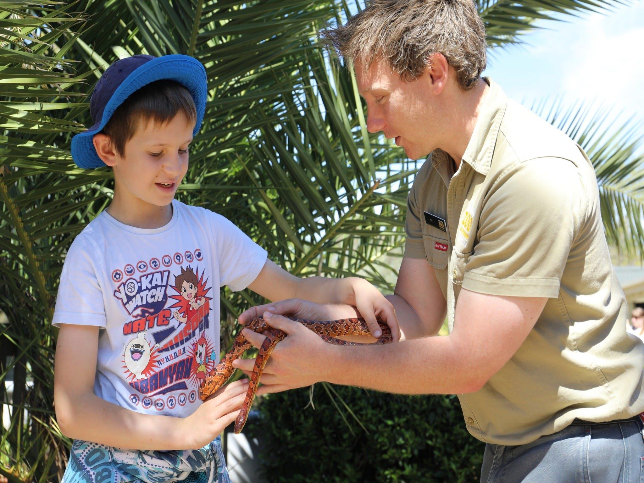 Zoocation at the National Zoo  Aquarium - Palm Beach Accommodation